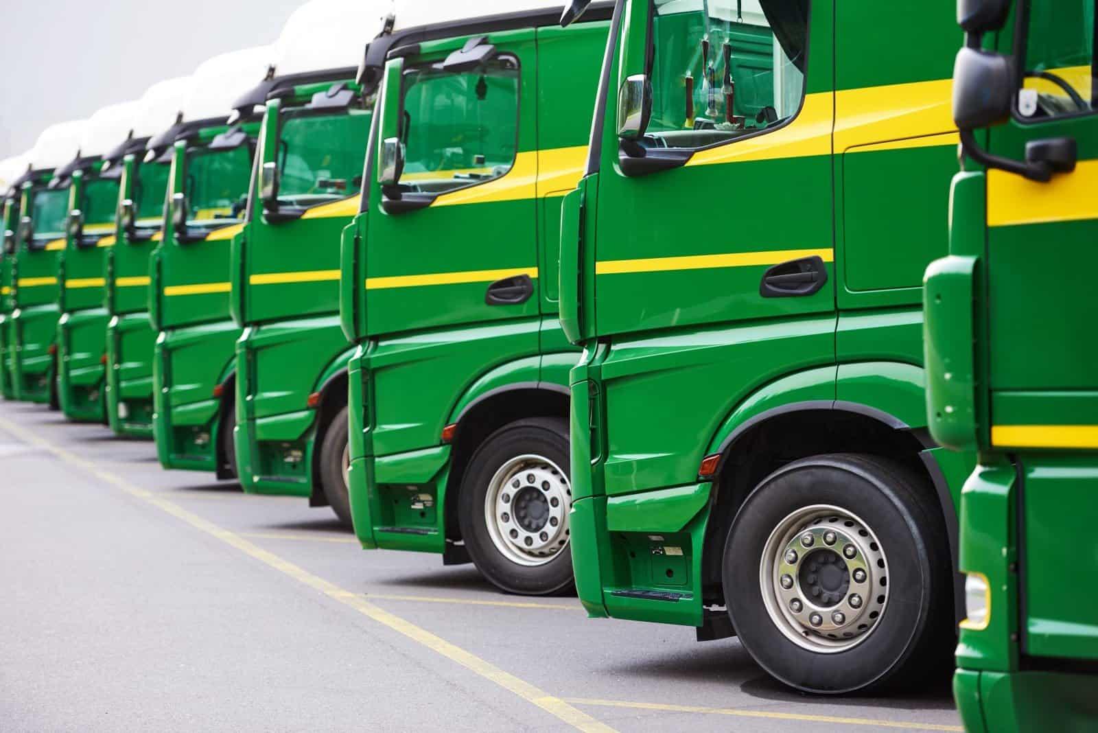 Acer Green - Truck & Van Immobiliser - Maple Fleet Services